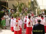 Domingo de Ramos 2009_216