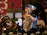 Feria y Fiestas de la malena 2009. Coronación  y Fuegos Artificiales-1_106