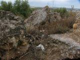 Ruinas de Iliturgi y Calzada Romana_102