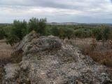 Ruinas de Iliturgi y Calzada Romana_123