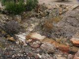 Ruinas de Iliturgi y Calzada Romana_124
