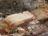 Ruinas de Iliturgi y Calzada Romana_127