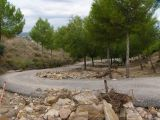 Ruinas de Iliturgi y Calzada Romana_72