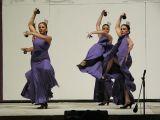 Portico de Feria 2009 . Academia de Baile F&M_259
