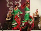 Portico de Feria 2009 . Academia de Baile F&M_341