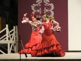 Portico de Feria 2009 . Academia de Baile F&M_365