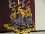 Pórtico de Feria 2009. Concurso de Sevillanas. 20-07-2009_86