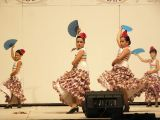 Pórtico de Feria 2009. Escuela de Danza Zambra. 18-07-2009_161