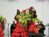 Pórtico de Feria 2009. Escuela de Danza Zambra. 18-07-2009_92