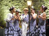 Berbena de San Antonio y San Pedro-2010_77