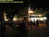 Cruz de Mayo 2010_143
