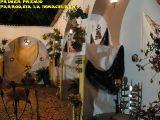 Cruz de Mayo 2010_162