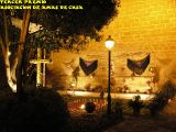 Cruz de Mayo 2010_210