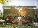 Cruz de Mayo 2010_240