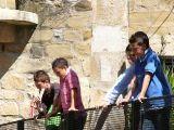 Domingo de Resurrección 2010-2_129
