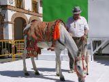 Fiestas de la Malena 2010- Concurso de pintura y comienzo de fiestas_156