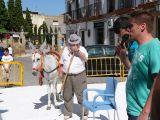 Fiestas de la Malena 2010- Concurso de pintura y comienzo de fiestas_161