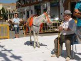 Fiestas de la Malena 2010- Concurso de pintura y comienzo de fiestas_165