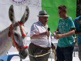 Fiestas de la Malena 2010- Concurso de pintura y comienzo de fiestas_173