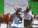 Fiestas de la Malena 2010- Concurso de pintura y comienzo de fiestas_175