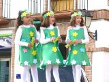 Carnaval 2011. Pasacalles-3_197