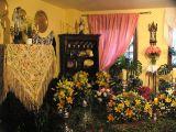 Cruz de Mayo 2011. Hermano mayor_17