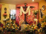 Cruz de Mayo 2011. Hermano mayor_26