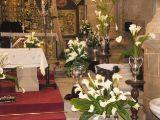 Domingo de resurrección 2011_164