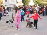 San Antón-2011-1_121