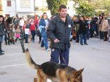 San Antón-2011-1_139