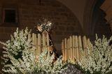 Los Rosarios 2012. Virgen de los Dolores_64