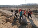Plantación de árboles 28-02-2012_27