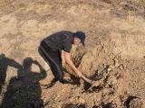 Plantación de árboles 28-02-2012_29
