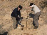 Plantación de árboles 28-02-2012_30