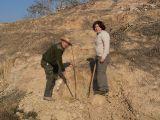 Plantación de árboles 28-02-2012_38