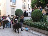 San Antón-2012_237