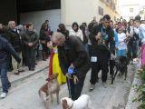 San Antón 2013_192