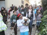 San Antón 2013_194