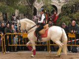 San Antón 2013_266