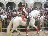 San Antón 2013_268