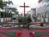 Cruces-2014. 2ª-Barriada S. José Obrero_37