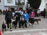 San Antón 2014_251