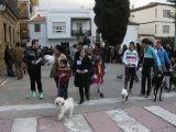 San Antón 2014_271