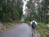 Camino del Norte a Santiago, por la costa-2003_330
