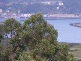 Camino del Norte a Santiago, por la costa-2003_360