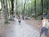 Viaje Camino Aragonés_457