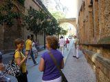 Viaje Camino Aragonés_602