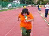 1-Competiciones deportivas para discapacitados (56)