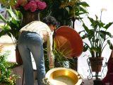 1-Cruz_de_mayo_2008_en_Mengibar_(20)