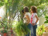 1-Cruz_de_mayo_2008_en_Mengibar_(21)
